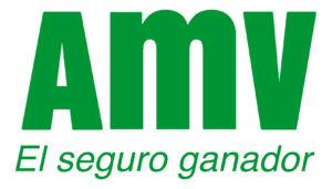 Calcula el precio de tu seguro de moto con AMV