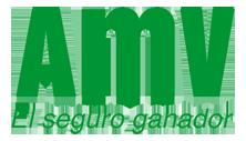 amv_logo_222